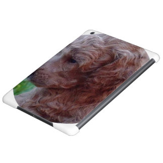 Charly,poodle baby case for iPad air
