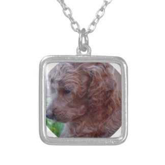 Charly,poodle baby. necklace