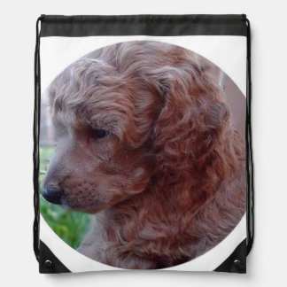 Charly,poodle baby drawstring bags