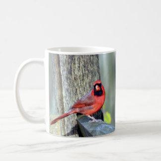 Charming Cardinals (Male & Female) Mug