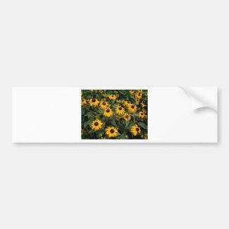 Charming Cluster Bumper Sticker