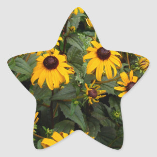 Charming Cluster Star Sticker