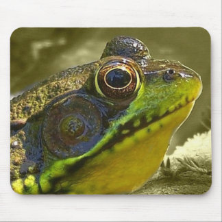 charming frog mouse pad