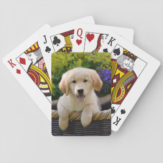 Charming Goldie Dog Cute Puppy, Playing Playing Cards