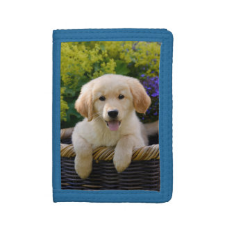 Charming Goldie Dog Cute Puppy, Purse Trifold Wallets