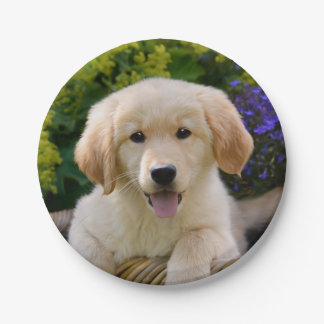 Charming Goldie Dog Puppy Portrait, party Paper Plate
