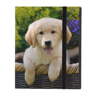 Charming Goldie Retriever Dog Puppy - Hardcase iPad Covers