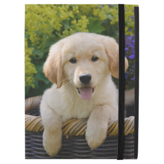 Charming Goldie Retriever Dog Puppy Photo  protect iPad Pro Case