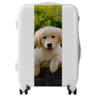 Charming Goldie Retriever Dog Puppy Photo Suitcase