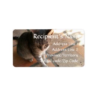 Charming Kitty Address Label