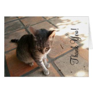 Charming Kitty Greeting Card