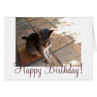 Charming Kitty; Happy Birthday Greeting Card