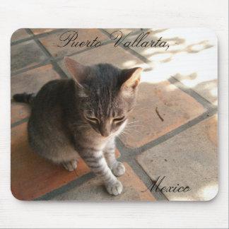 Charming Kitty; Puerto Vallarta, Mexico Mouse Pad