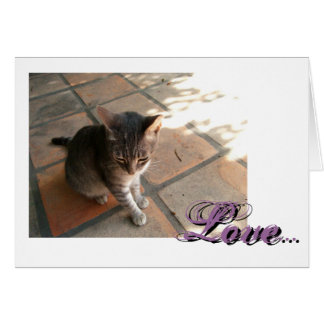 Charming Kitty; Sweet Nothings Greeting Card