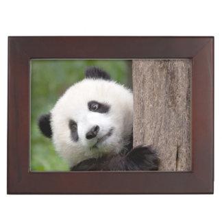Charming Panda Bear keepsake box
