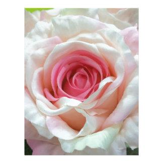 Charming petals.jpg letterhead