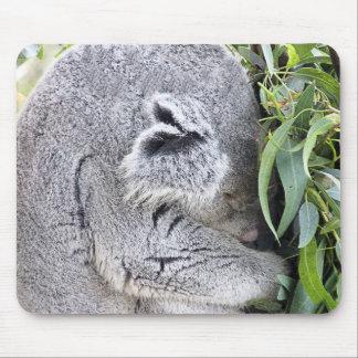 Charming Sleeping Australian Koala Mouse Pad