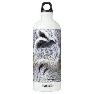 Charming Sleeping Australian Koala Water Bottle