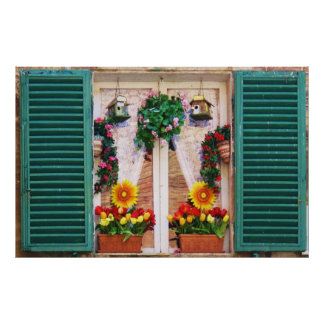Charming windowbox sunflowers poster
