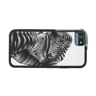 Charming Zebras iPhone 5 Cover