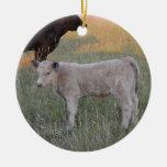 Charolais calf christmas ornament