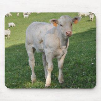 Charolais calf mousemat zazzle_mousepad
