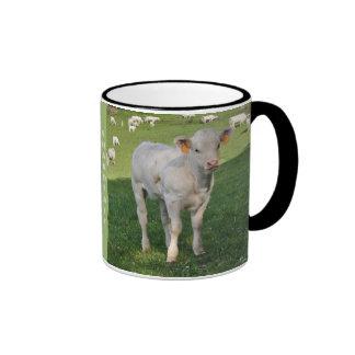 Charolais calf mug
