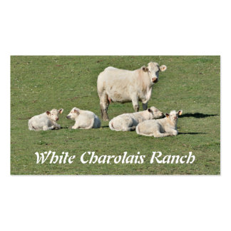 Charolais cow and four calves Double-Sided standard business cards (Pack of 100)