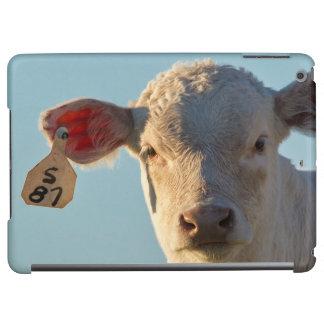 Charolaise Beef Calf Near Augusta, Montana, USA iPad Air Cover