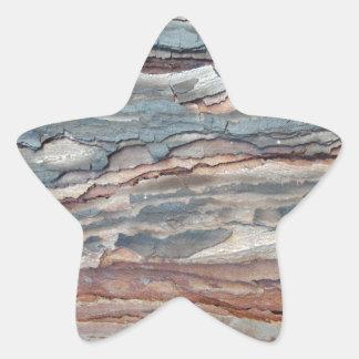 Charred Pine Bark Star Sticker