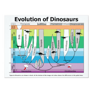 Chart of the Evolution of Dinosaurs Card
