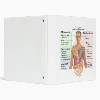 Chart of the Symptoms of Raw Fish Infection 3 Ring Binder