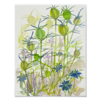 Chartreuse Green Nigella Watercolor Flowers Poster