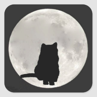 Chartreux Cat Full Moon Square Sticker