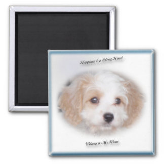 Chase Cavachon Magnet
