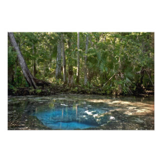 Chassahowitzka Spring. Citrus County Florida. Photo Print