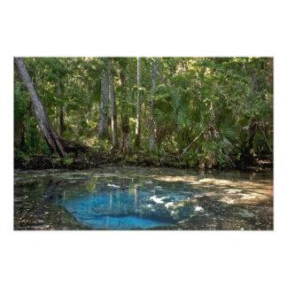 Chassahowitzka Spring. Citrus County Florida. Photo Print
