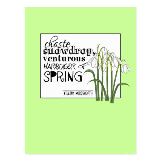 Chaste Snowdrop Postcard