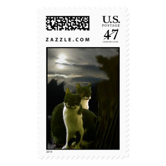 chat postage
