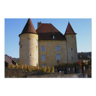 Chateau and vineyards, Arbois Posters