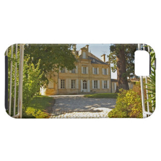 Chateau Cos Labory in Saint St Estephe, wrought iPhone SE/5/5s Case