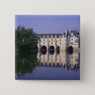 Chateau du Chenonceau, Loire Valley, Button