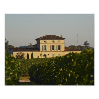 Chateau Lafleur Petrus and vineyard, in Pomerol, Poster