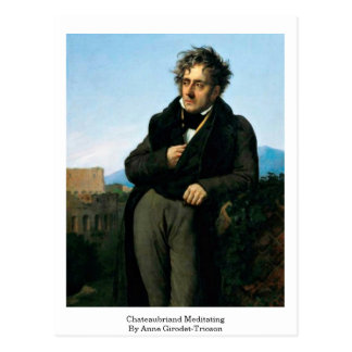 Chateaubriand Meditating By Anne Girodet-Trioson Postcard