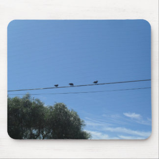 chatering birds mouse pad