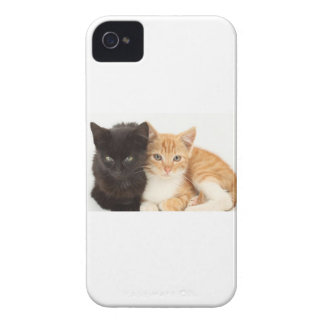 Chaton iPhone 4 Case-Mate Protectores