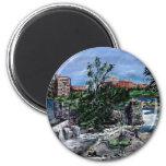 Chattahoochee River Columbus GA  & Phenix City Fridge Magnets