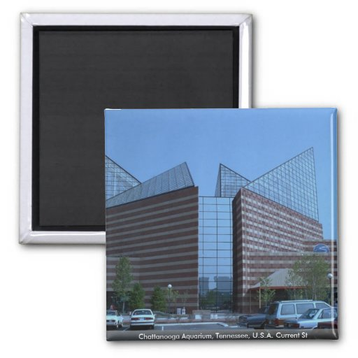 Chattanooga Aquarium, Tennessee, U.S.A. Current St 2 Inch Square Magnet