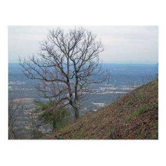 Chattanooga, Tennessee 001 Postal