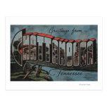 Chattanooga, Tennessee (River Scene) Postcard